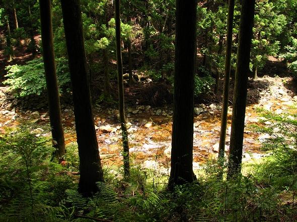 kaduka_river_002.jpg